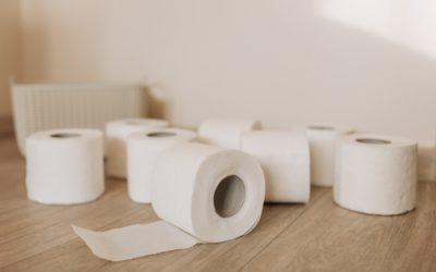 10 Fun Toilet Paper Facts